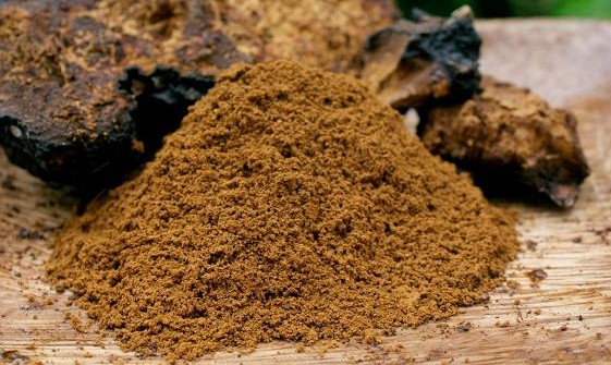 how to use chaga powder